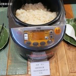 ブルーパパイアタイランド - 鶏出汁で炊いたご飯