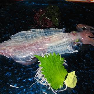 呼子から直送される旬の魚は新鮮プリプリ。