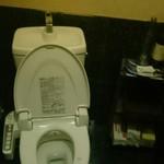 58254178 - 少し暗めの綺麗なトイレ