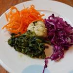 SALVATORE CUOMO - サラダ各種