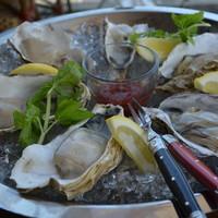 SAKE×牡蠣鉄板 港町バル - オイスター・プラッター 本日の生牡蠣盛り合わせ