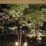 ウエスト青山ガーデン - 夜景