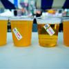 宮崎ひでじビール - ドリンク写真:左からまろやか日向夏、限定醸造へべしゅ、ゴールデンアロー、万感熊本YELL