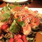 ベトナムフロッグ - 油林鶏