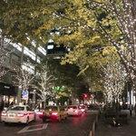 marunouchi cafe 倶楽部21号館 - 丸の内仲通りクリスマスイルミネーション