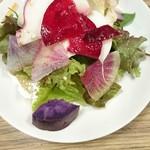 ヒラタパスタ - 10種野菜と茹で鶏の彩りサラダ