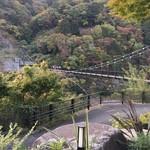 58442342 - 雄大な山と吊り橋