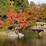 汐入亭 - 白鳥庭園1