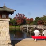 汐入亭 - 白鳥庭園2