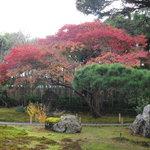 嵯峨野 - 庭園の風景を眺めながら