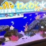 はま寿司 幸手上高野店 - わくわく水族館