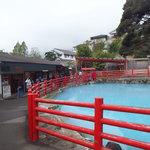 58549145 - 五丁目の池は色が変化するそうですが、この日はこんな色。