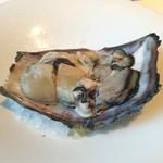 イタリアン オット - 岩牡蠣。隣の写真のトマトと一緒に食べます