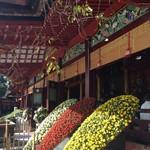 58558706 - 太宰府天満宮では11/1〜25大菊花展が行われていました