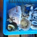 能島水軍 - セットの魚介