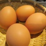 丸田屋 - 茹で卵