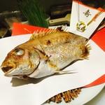 太華 - 祝いの鯛