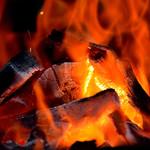 漁火 - 当店では備長炭を使用しています。
