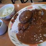 メルヘン - 料理写真:ハンバーグカレーにしてみました。