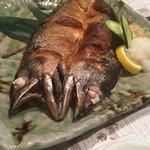 とろさば料理専門店 SABAR - メガトロ鯖の塩焼き(丸ごと)1922円
