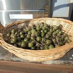 やまね食堂 - サルナシが収穫されていました