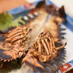 和処 志ほ - ◆パチエビ 伊勢海老と同じくらい美味しいと称されることもあるパチエビ。 その形から、伊勢海老ほどの存在感はないのですが、身が締まっていてプリップリです。  1匹丸ごと焼きで真っ二つ。大胆‼︎豪快‼︎