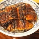 58754049 - パリパリ鰻が5切れの上丼。