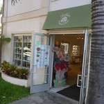 Tilia Exquisite Aloha -