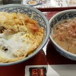 めん房つるつる - 料理写真:天麩羅丼におろしそば(小)