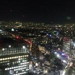58862535 - 名古屋の夜景