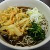 秩父そば - 料理写真:天ぷらそば(\450)