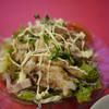 双龍 - 料理写真:蒸し鶏サラダ~☆