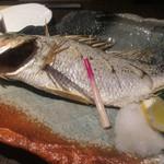 58974850 - いさき(焼き魚)