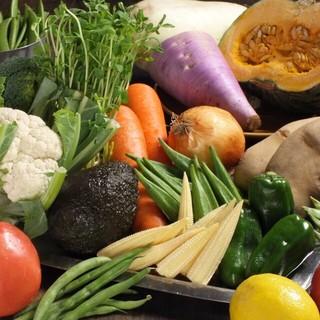 引き続き人気の新鮮野菜メニュー