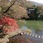 万葉 - 川にはお魚さんがいっぱいなのだ♡