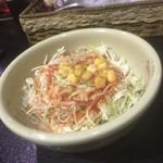インド料理 シャティ - サラダ(2回目訪問時撮影)