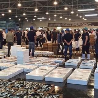 柳川の魚市場から仕入れた鮮度抜群の魚を使用☆
