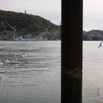 魚信旅館 - お部屋からすぐ海です