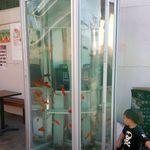 旬味和膳 季乃庄 - 金魚が泳ぐ電話ボックスも歩いてすぐ