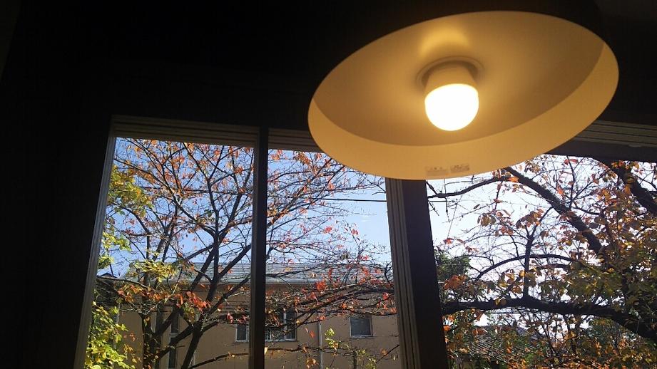マーマー コーヒー 京都