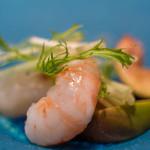 智映 - 牡丹蝦(ぼたんえび)