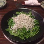 59205129 - お通しのシラスと水菜のサラダ  中年には嬉しい。