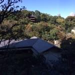 59207191 - 椿山荘 お庭