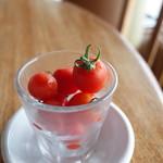 ブルワリー レストラン オラホ - 菅谷さん家のベリートマト