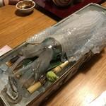 博多 表邸 - 呼子のイカ