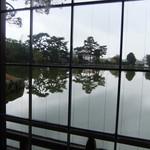 衣掛茶屋 - 店内から眺めた猿沢池