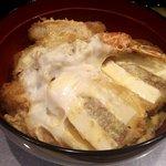 田むら 銀かつ亭 - 豆腐かつ三色丼(アップ)