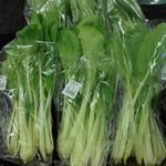 滑川農産物直売所 - 杓子菜の小さいのがありました
