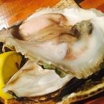 牡蠣と日本酒 のんき -