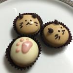一心茶房 - 猫チョコ